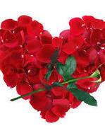 Rose Morfin